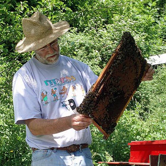 femme apiculture cherche homme site rencontre etats unis